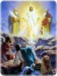 transfiguration2-227x300