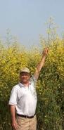http://dqhall59.com/images/tall_mustard.jpg